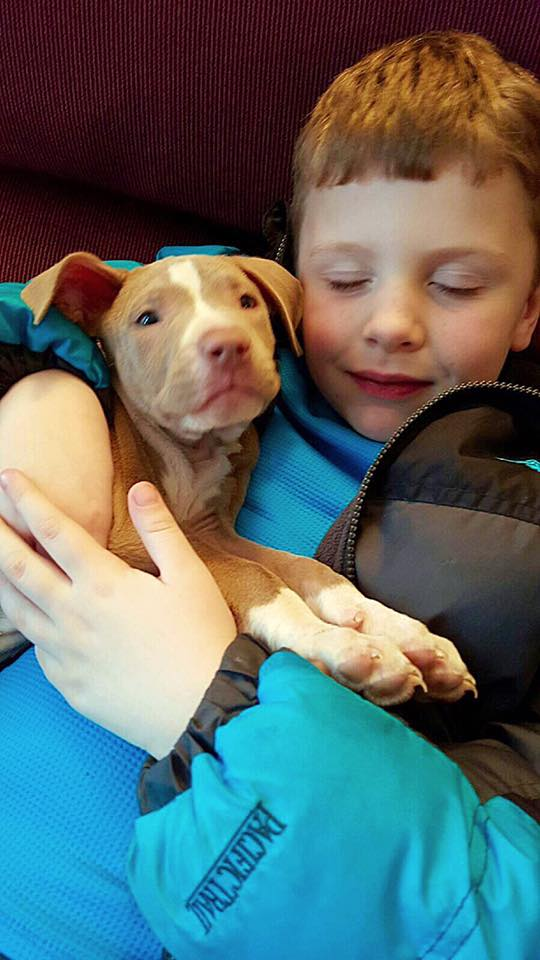 lost dog recovered held by child